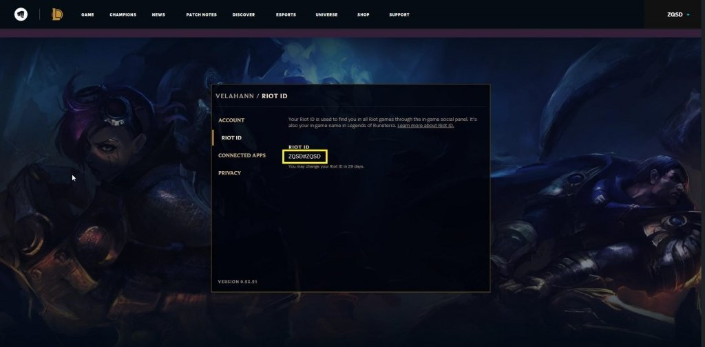 Trouver son RIot Id Screenshot