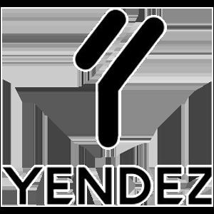 Open Tour France : Les équipes à surveiller ! - Yendez Logo 2 - Mandatory.gg