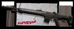 Skins Guardian