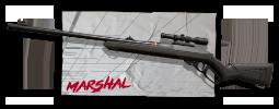 Skins Marshal