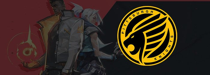 xCeeD rejoint Pittsburgh Knights et complète le roster ! - Valorant News - Mandatory.gg