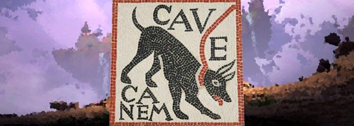 HyP lance son équipe : Cave Canem