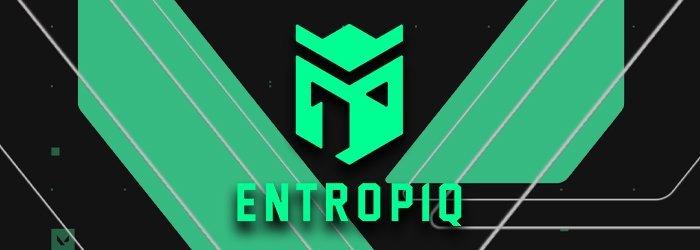 Entropiq se sépare de son roster et quitte Valorant
